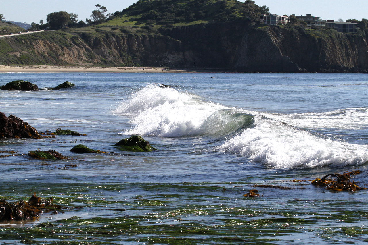 Click for bigger - Crystal Cove Newport Coast CA 2011