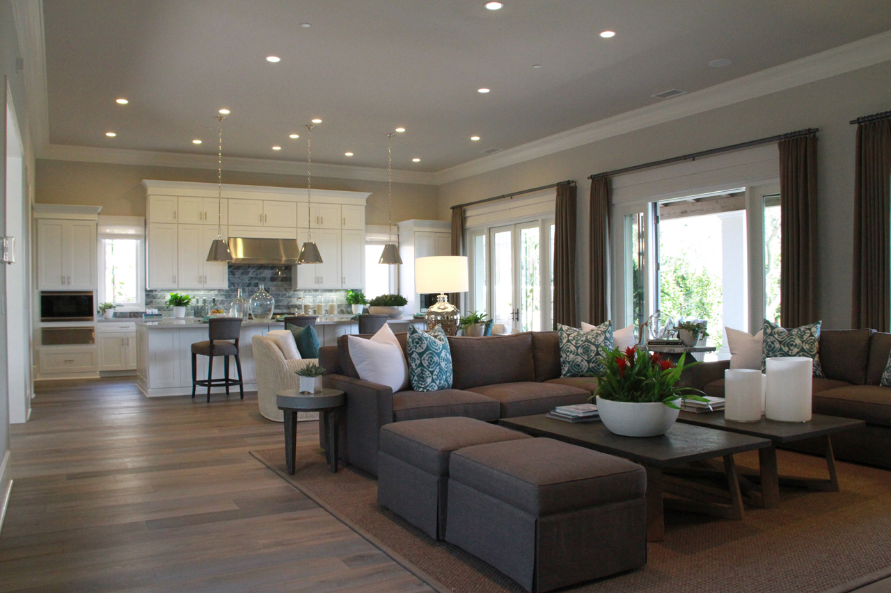 Oliva-New-Construction-San-Juan-Capistrano-2015-03-31_00